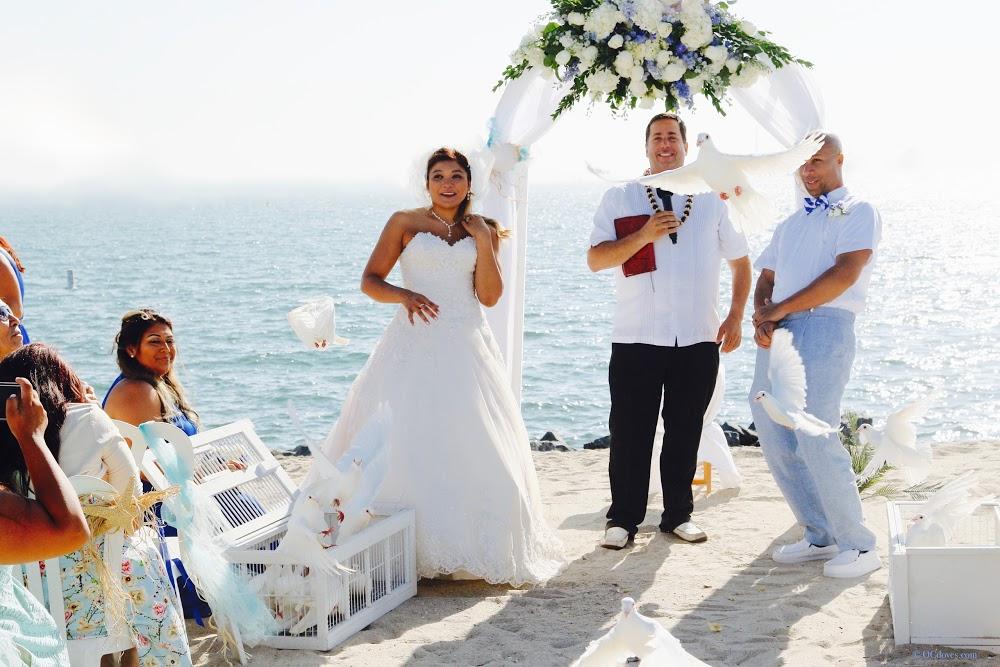 Alan Katz – A Great Wedding Minister